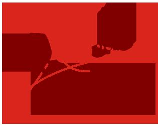Rogers Akadémia